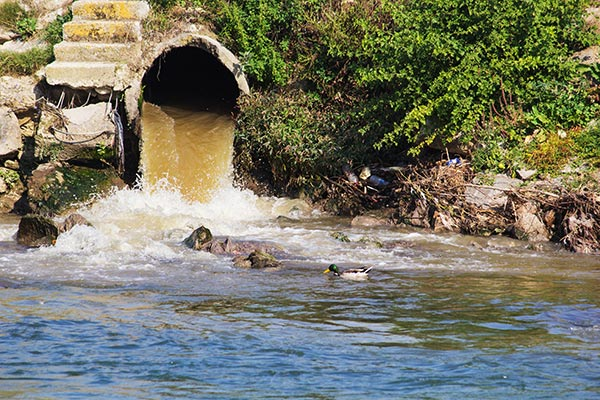 Stormwater Pollution Types Varying Negative Effects On The